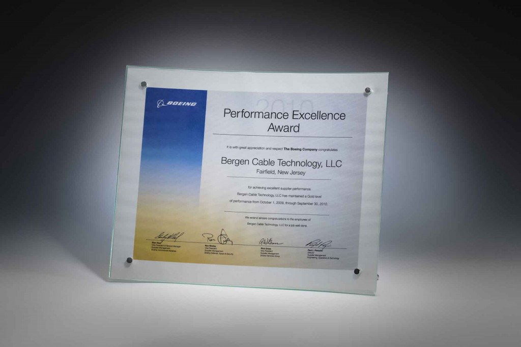 Performance Excellence Award 2